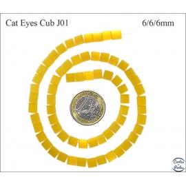 Perles oeil de chat lisses - Cubes/6 mm - Jonquille
