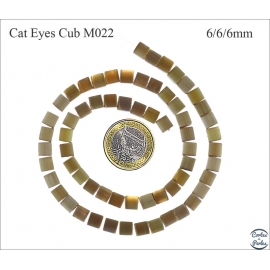 Perles oeil de chat lisses - Cubes/6 mm - Sienna