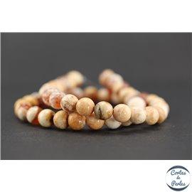 Perles semi précieuses en agate - Rondes/8 mm - Orange