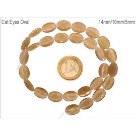 Perles oeil de chat facettées - Ovales/14 mm - Gold