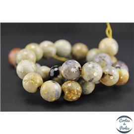 Perles semi précieuses en agate - Rondes/16 mm - Light gold