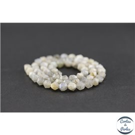 Perles semi précieuses en labradorite - Pépite/5,5 mm