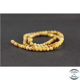 Perles semi précieuses en pierre de fossile - Ronde/4 mm