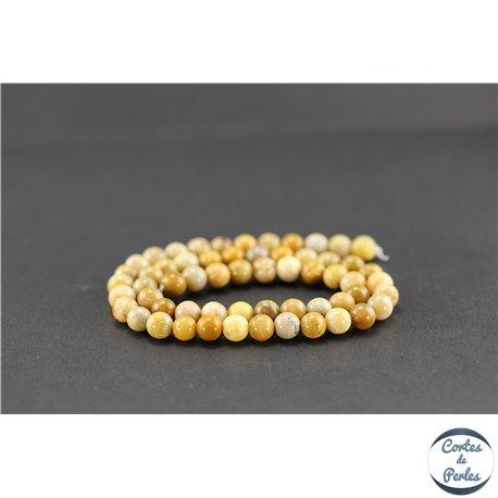Perles semi précieuses en pierre de fossile - Ronde/6 mm