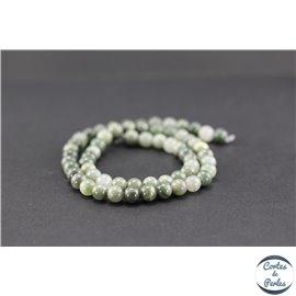Perles en pierre de fossile verte - Rondes/6mm
