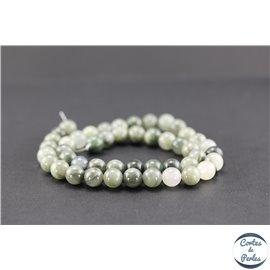 Perles semi précieuses en pierre de fossile - Ronde/8 mm