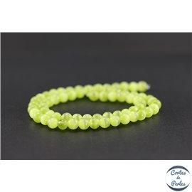 Perles oeil de chat lisses - Rondes/6 mm - Vert olive