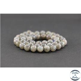 Perles semi précieuses en labradorite - Ronde/8 mm