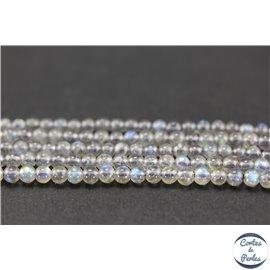 Perles semi précieuses en labradorite - Rondes/4 mm - Grade AA