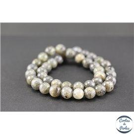 Perles semi précieuses facettées en labradorite - Rondes/10 mm