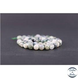 Perles facettées en agate arbre - Ronde/6 mm