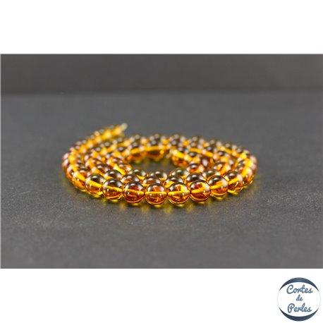 Perles en ambre de la Baltique - Rondes/7 mm - Miel - Grade A