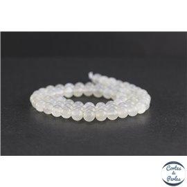Perles en pierre de Lune opalescente du Sri Lanka - Rondes/6 mm - Grade AA