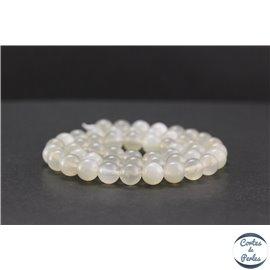 Perles en pierre de Lune opalescente d'Inde - Rondes/8 mm - Grade AA