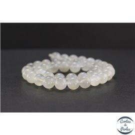 Perles en pierre de Lune opalescente d'Inde - Rondes/10 mm - Grade AA
