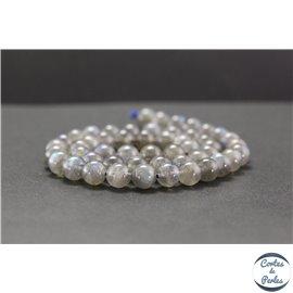 Perles en labradorite de Madagascar - Rondes/8mm - Grade AA