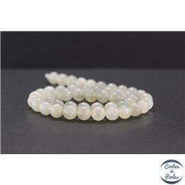Perles en pierre de Lune opalescente du Sri Lanka - Rondes/8mm - Grade A