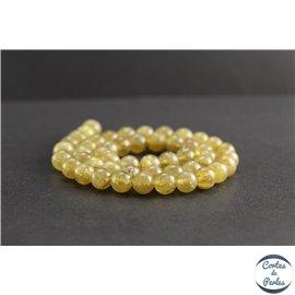 Perles en apatite jaune de Madagascar - Rondes/8mm - Grade AA