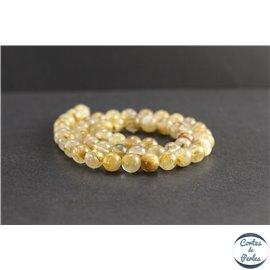 Perles en quartz rutile - Rondes/8mm - Grade AA