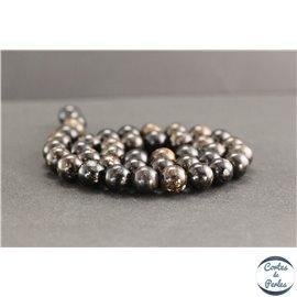 Perles en biotite - Rondes/10mm - Grade A