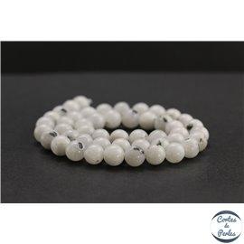 Perles en pierre de lune du Sri Lanka - Rondes/8mm - Grade B