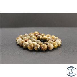 Perles en bois pétrifié de Madagascar - Rondes/10mm - Grade A