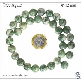 Perles en agate arbre - Rondes/12mm