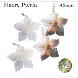 Pendentifs en Nacre - Fleur/45 mm - Beige