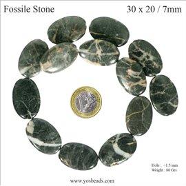 Semi précieuses perles de fossile - Ovales/30 mm - Gris marbré
