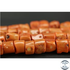 Perles semi précieuses en Gorgone Corail - Irrégulier/20 mm - Orange