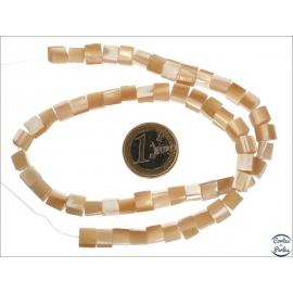 Perles en nacre - Cubes/5 mm - Miel clair