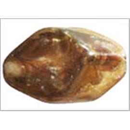 Perles en résine naturelle - Losanges/18 mm - Bronze