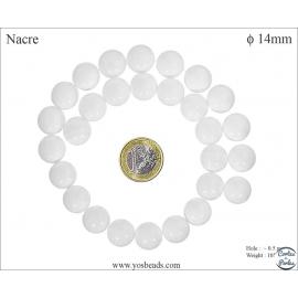 Perles en nacre - Rondes/14 mm - Blanc