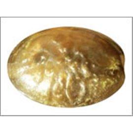 Perles en résine naturelle - Ovales/24 mm - Bronze
