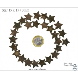 Perles en nacre - Étoiles/15 mm - Marron