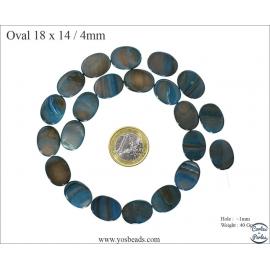 Perles en Nacre - Ovale/18 mm - Bleu