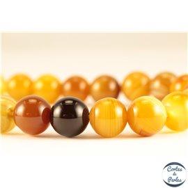 Perles semi précieuses en agate - Rondes/10 mm - Miel