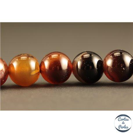 Perles semi précieuses en Agate - Rondes/10 mm - Marron
