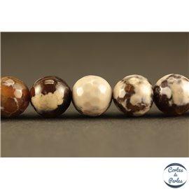 Perles en agate café au lait - Rondes/10mm
