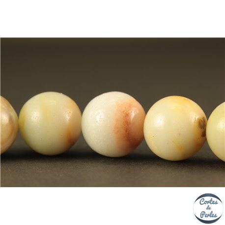 Perles semi précieuses en amazonite - Rondes/12 mm
