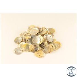 Perles en Nacre - Disques/15 mm - Double trous