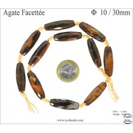 Perles semi précieuses en agate - Tubes/10 mm - Fauve