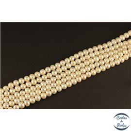 Perles de culture - Rondes/6mm - Ivoire