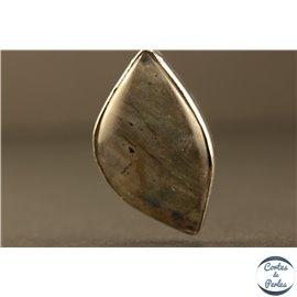 Pendentifs en Labradorite - Gouttes/30 mm