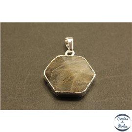 Lot de 5 pendentifs en pierre de lune - Hexagones/27 mm