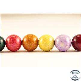Perles semi précieuses en pierre de fossile - Rondes/10 mm - Multicolore