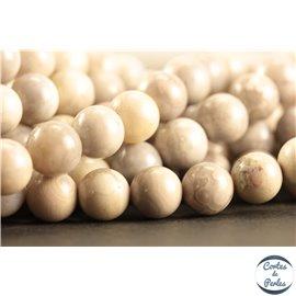 Perles semi précieuses en malachite - Rondes/8 mm - Blanc