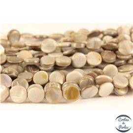 Perles en Nacre - Disque/10 mm - Gris