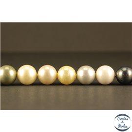 Perles de Majorque - Ronde/ Ø 10 mm - Multicolore - Grade A