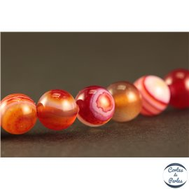 Perles en agate dark red - Rondes/6mm